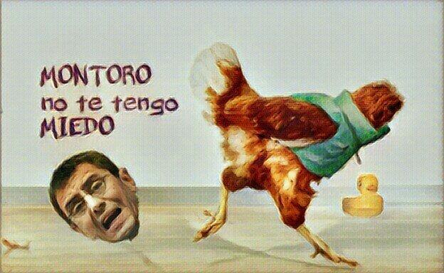 Moni, el pollo sin cabeza