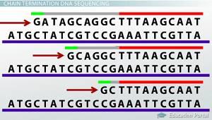 Lecciones de genética para separatistas y sediciosos