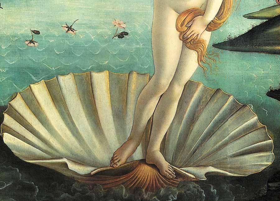 Los caracoles han sido siempre considerandos como símbolos de la fertilidad femenina