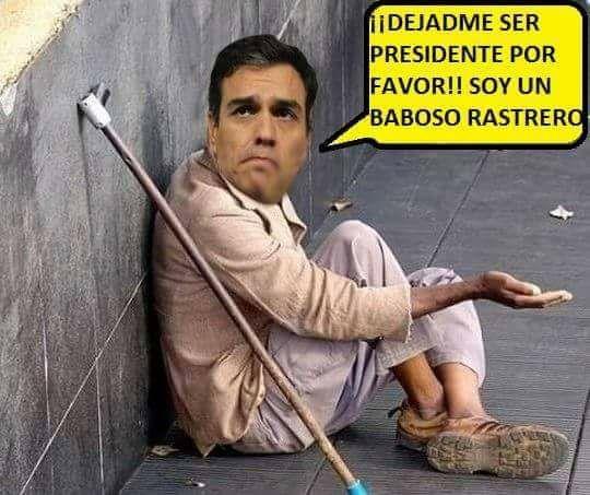 El PSOE dirigido por el indigente Sánchez