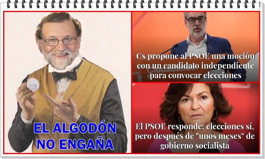 EL ALGODÓN NO ENGAÑA
