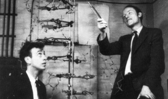 Crick y Watson en el laboratorio