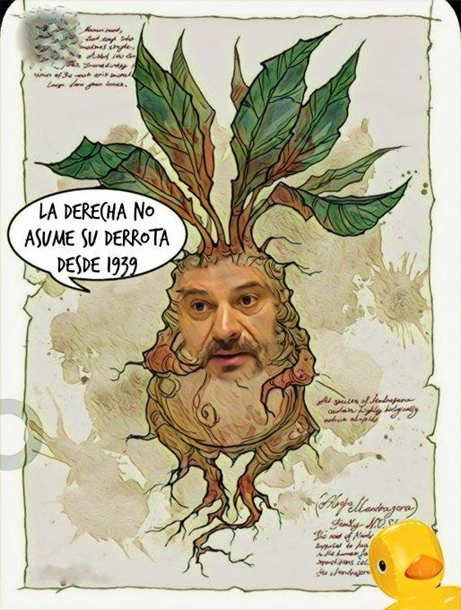 El vivero de líderes socialistas usa abono orgánico y se nota. Por Linda Galmor