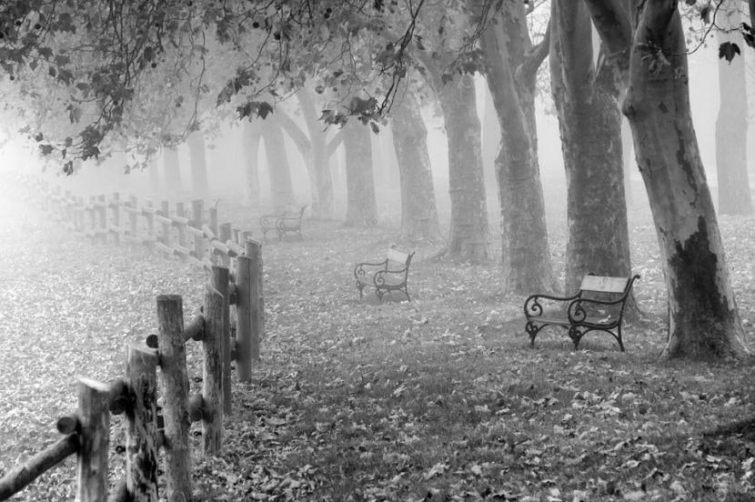 El peligro en esta España nuestra es la niebla que nos impide ver el futuro