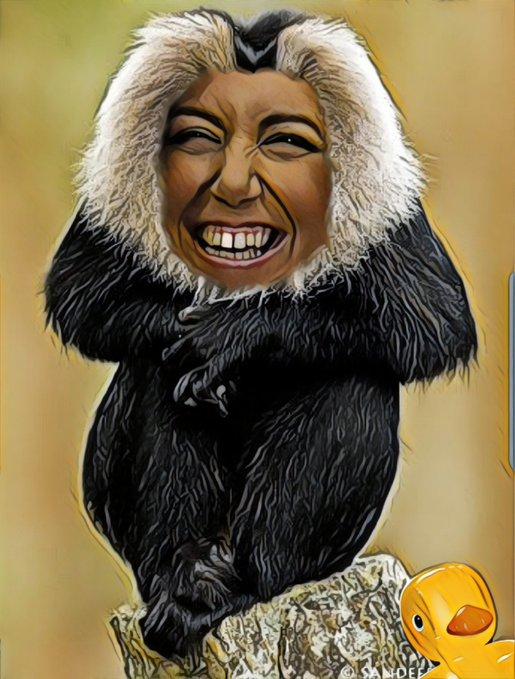 El político sin la seda del poder mono se queda. Por Linda Galmor