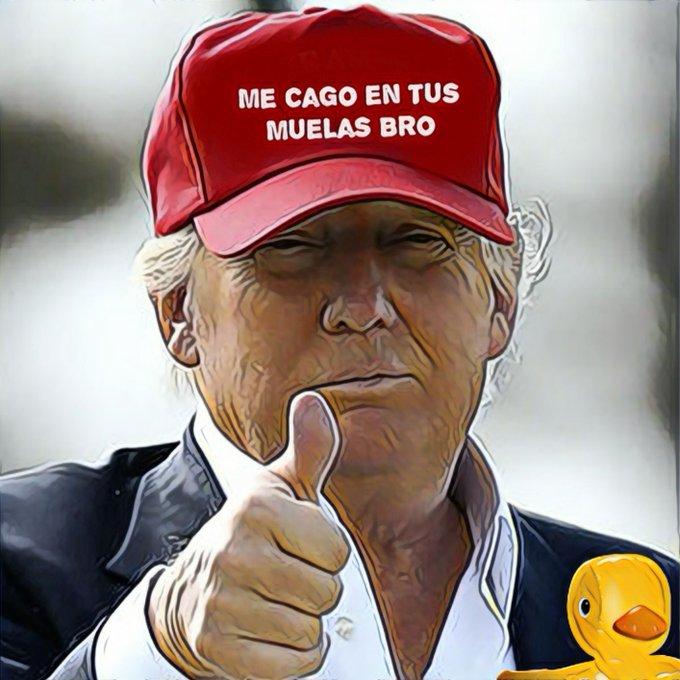 Veremos qué pasa con las presuntas irregularidades denunciadas por Trump porque mi amigo que vive en Norteamérica me ha dicho que ha sido el mejor presidente desde hace muchos años . Por Linda Galmor