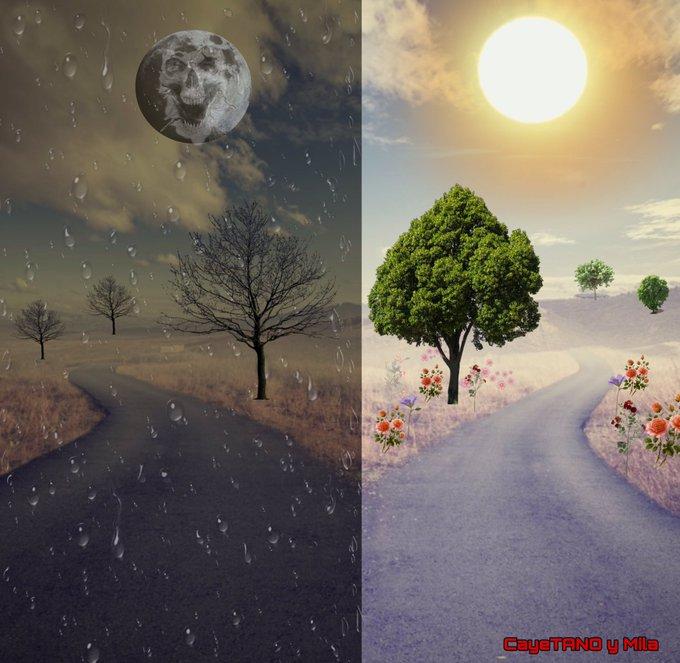Los dos caminos, el de la luz o el de las sombras. Ilustración de Tano